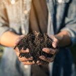Composter : un geste en faveur de la planète